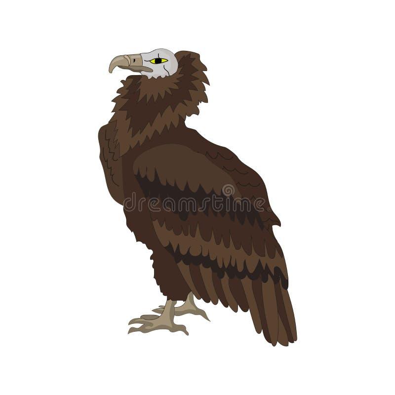 Griffon, Gier op de witte achtergrond met witte hoofd, bruine gekleurde vleugels Vector illustratie stock illustratie
