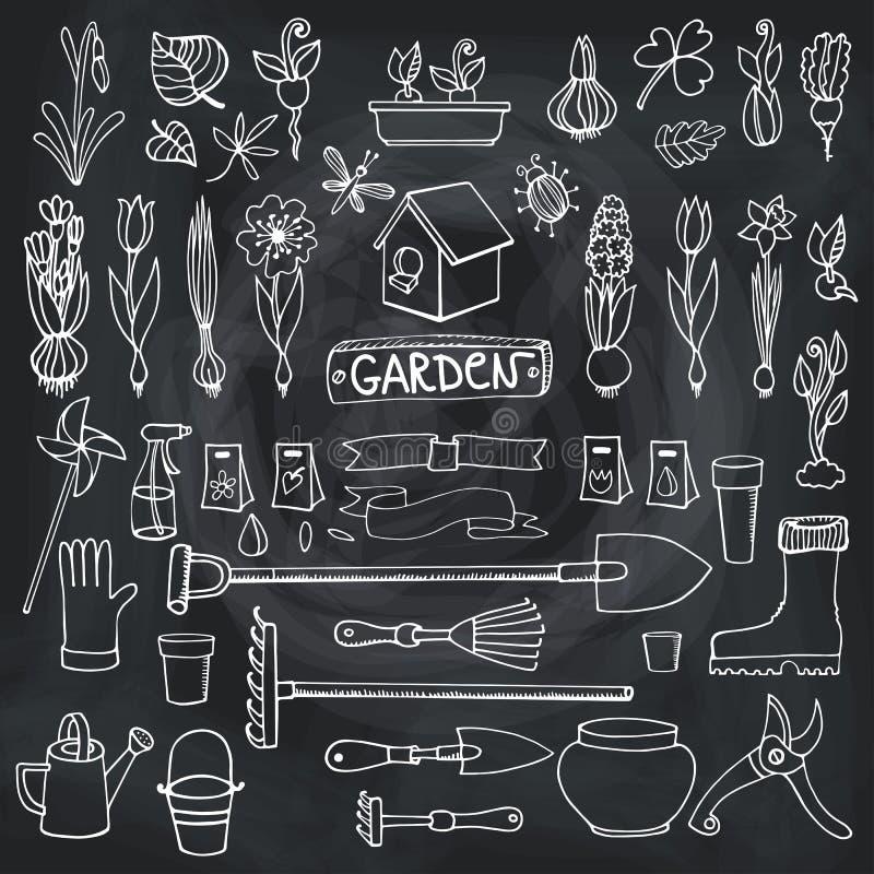 Griffonnages de jardin de ressort Fleurs, ampoules, usines, outils Craie illustration stock