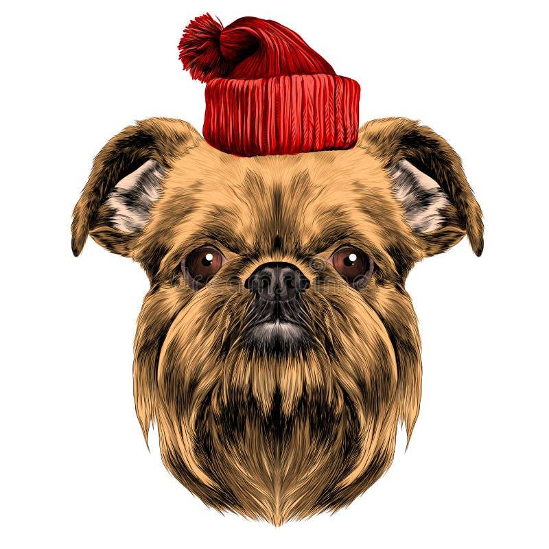 Grifone di Bruxelles della razza del cane royalty illustrazione gratis
