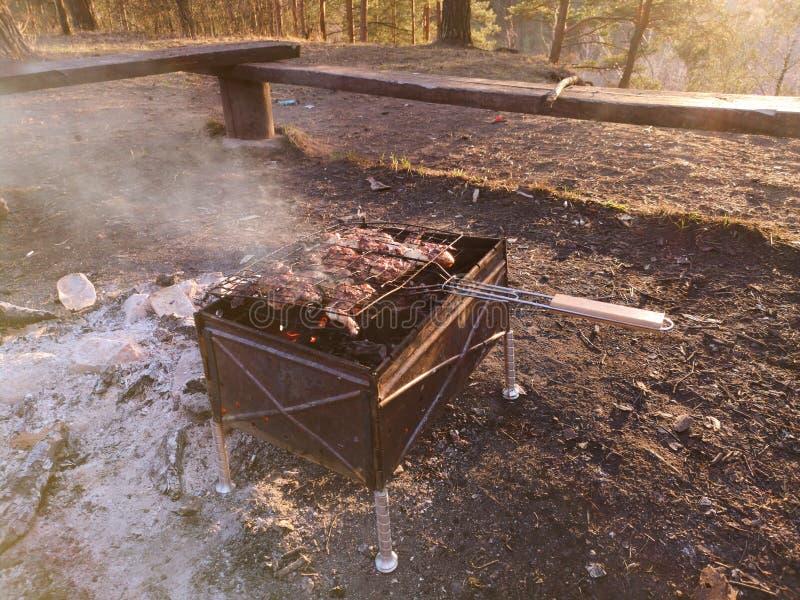 Grigli, friggendo la carne fresca, barbecue del pollo, la salsiccia, il kebab, l'hamburger, le verdure, il BBQ, il barbecue, frut fotografia stock