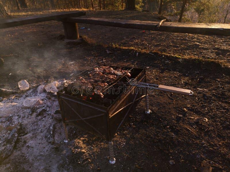 Grigli, friggendo la carne fresca, barbecue del pollo, la salsiccia, il kebab, l'hamburger, le verdure, il BBQ, il barbecue, frut fotografia stock libera da diritti