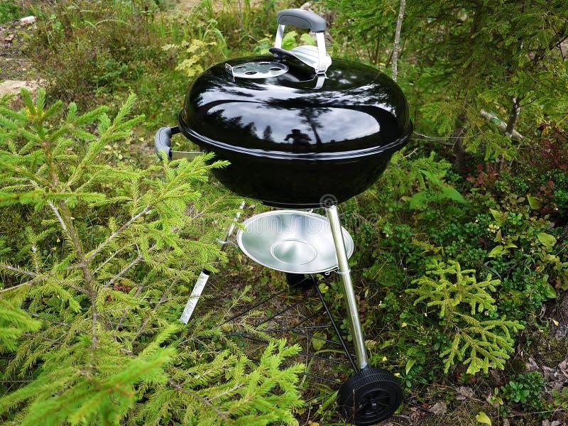 Griglia del barbecue, bistecche, cotolette, pesce e verdure fritte e l'altro alimento immagine stock