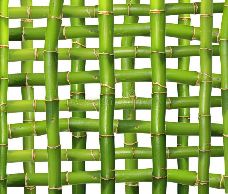 Griglia di bambù fotografia stock