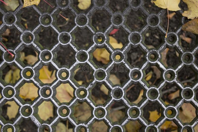 Griglia modellata del metallo e foglie di acero gialle bagnate immagini stock