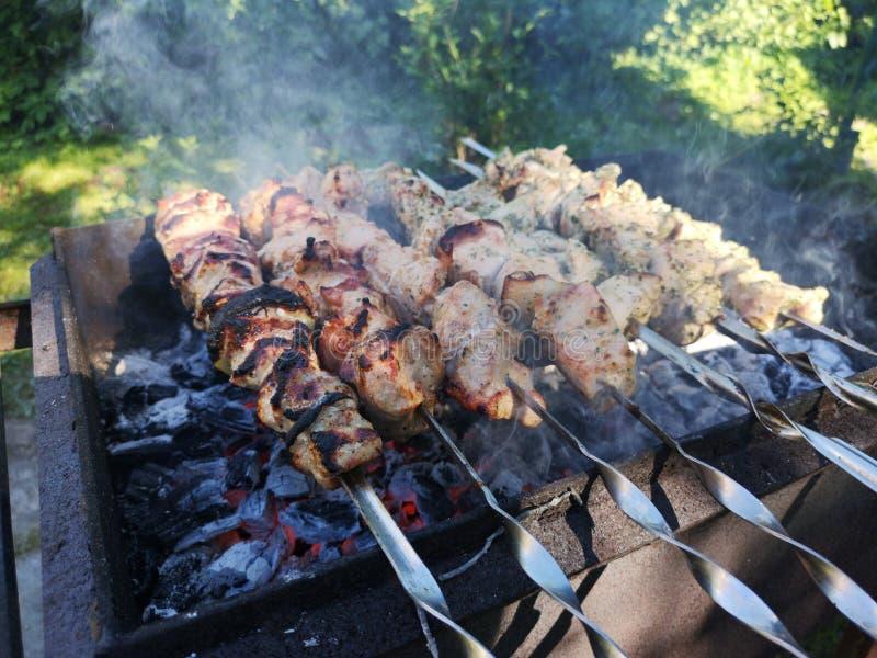 Grigliare shashlik sulla griglia del barbecue Giorno di estate pieno di sole fotografie stock