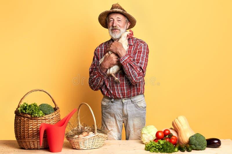 Grijs-haired landbouwer klaar om naar landbouwmarkt, voorbereide oogst op verkoop te gaan stock afbeelding