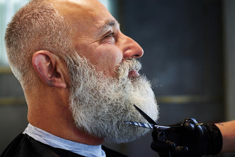 Grijs-haired mens met lange baard stock fotografie
