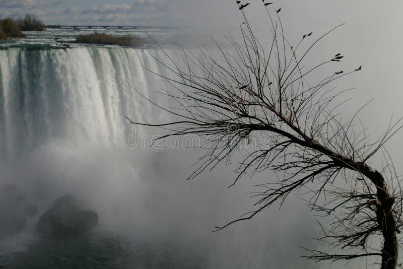 Download Grijze dag stock foto. Afbeelding bestaande uit watervallen - 44244