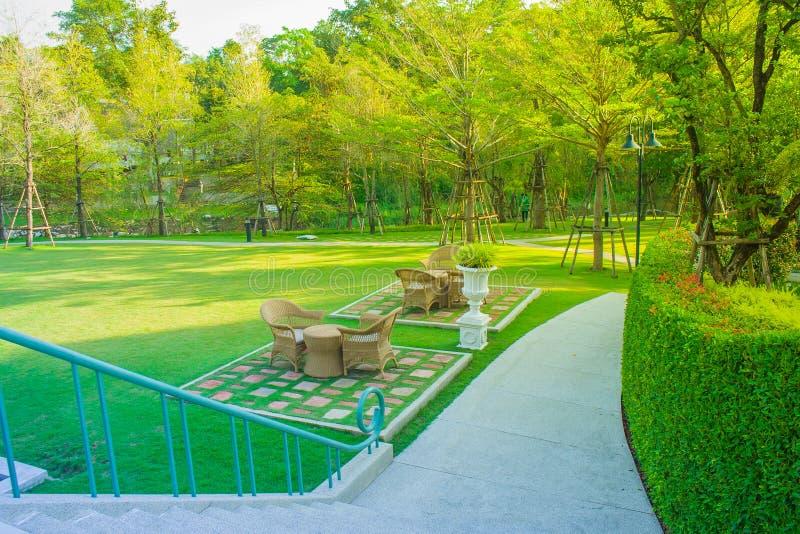 Grijze die weefselstoelen op groen gras in het park met ochtendzonlicht worden gevestigd op de achtergrond royalty-vrije stock fotografie