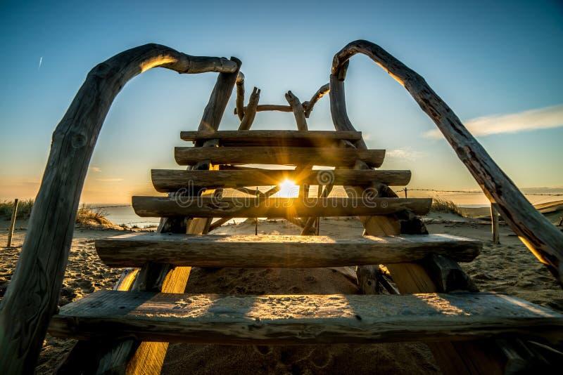 Grijze duinen in Litouwen Nida, houten treden stock foto