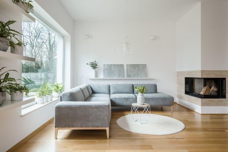 Grijze hoekzitkamer die zich in wit woonkamerbinnenland bevinden met twee moderne kunstschilderijen op de plank, de open haard en royalty-vrije stock foto