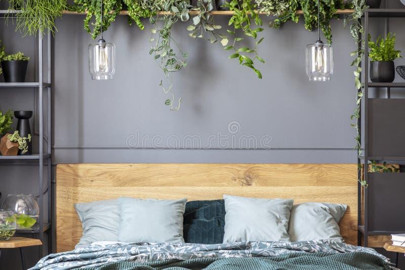 Grijze hoofdkussens op bed met houten hoofdeinde in slaapkamer binnenlandse wi royalty-vrije stock foto