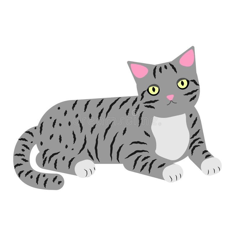 Grijze kat met strepen op witte achtergrond Het liggen de kat rust zorgvuldig eruit en ziet Vector illustratie royalty-vrije illustratie