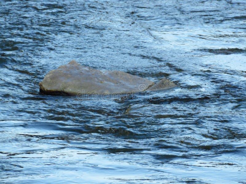 Grijze rots op de achtergrond van het rivierwater royalty-vrije stock afbeelding