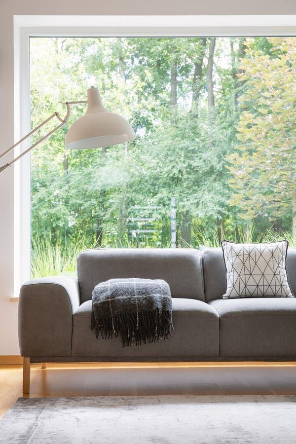 Grijze sofa met gevormd kussen en deken die zich in echte foto van woonkamerbinnenland bevinden met tapijt, overmaatse lamp en gr stock foto