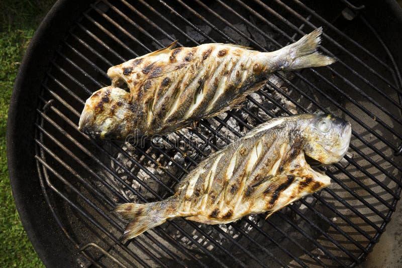 Gril de poissons image libre de droits