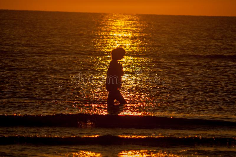 Gril. Girl who walks at sunset stock image
