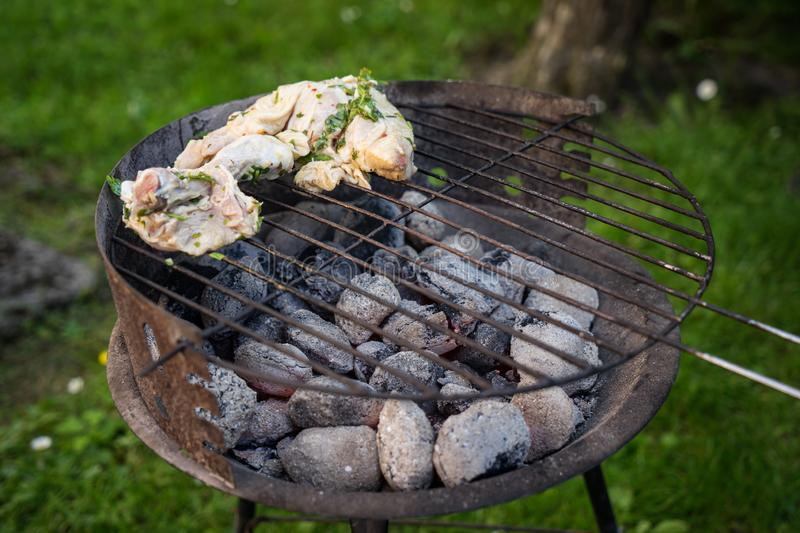 Grill garden party with sausages and meat. In czech republic royalty free stock image