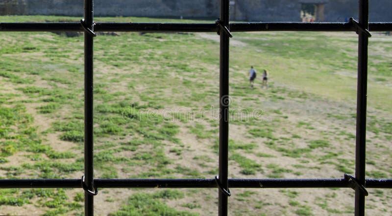 Grill z widokiem zielonej trawy obrazy royalty free