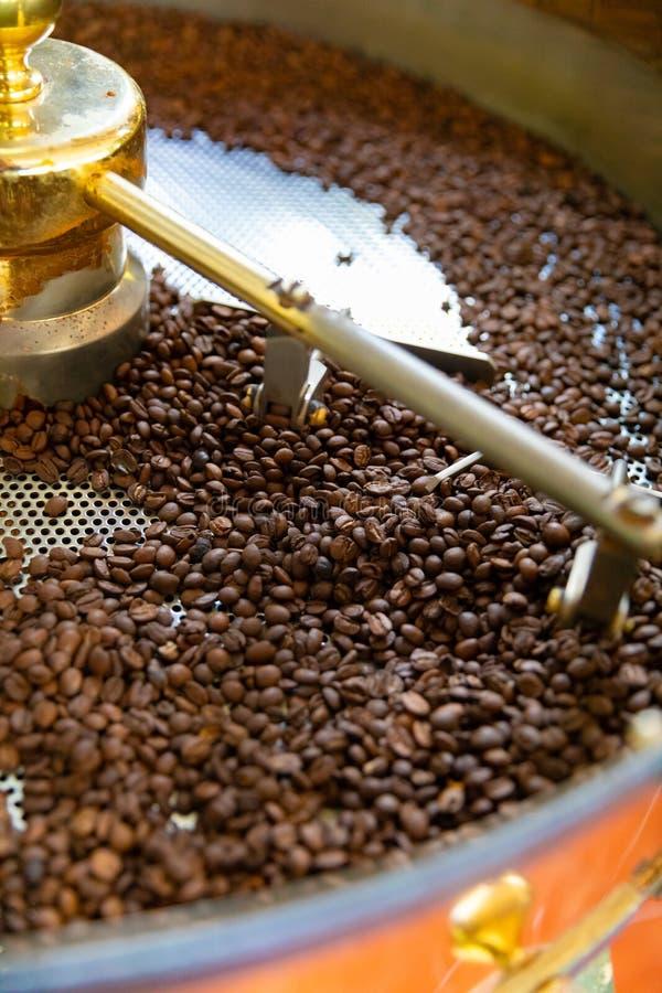 Grilla av r? organiska kaffeb?nor i produktion f?r liten skala fotografering för bildbyråer