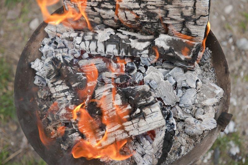 grilla kulinarny pożarniczy drewno obraz royalty free