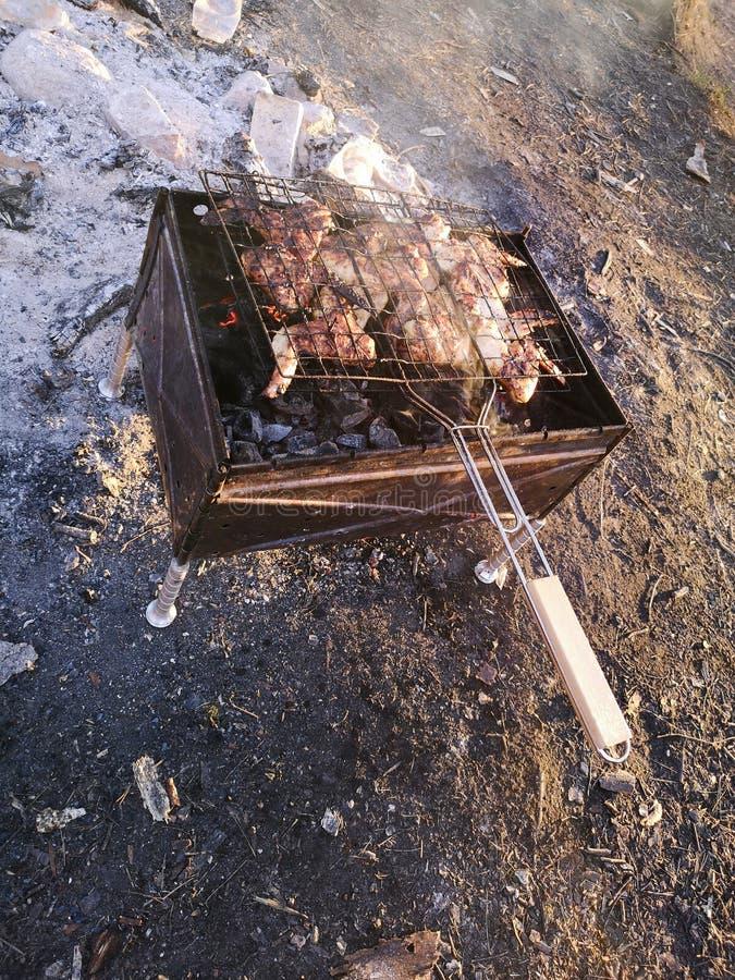 Grilla och att steka nytt k?tt, h?nagrillfesten, korven, kebaben, hamburgaren, gr?nsaker, BBQ, grillfesten, skaldjur grillade pep arkivfoton