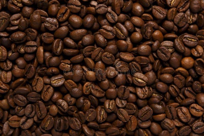 grillad övre sikt för bönor kaffe fotografering för bildbyråer