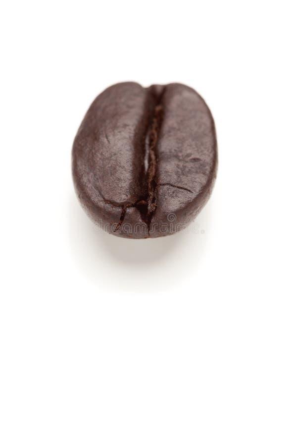 grillad enkel white för böna kaffe royaltyfri foto