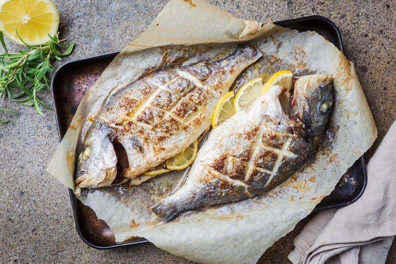 Grillad fisk Dorado arkivfoto