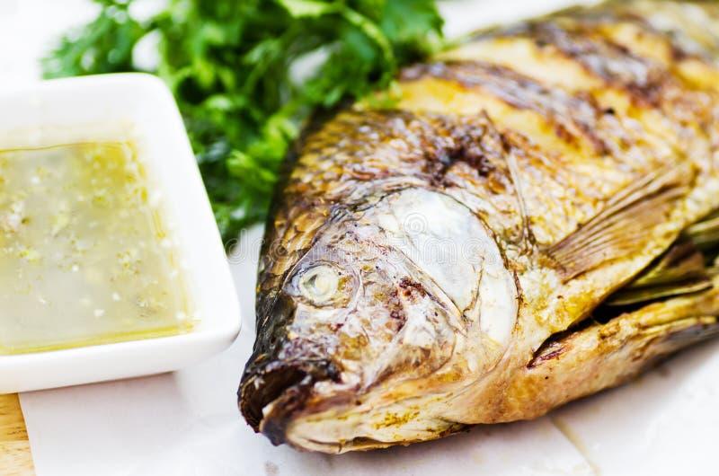 Grillad fisk och kryddig havs- sås royaltyfria bilder