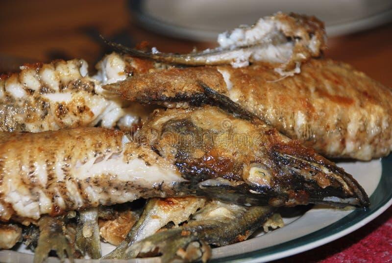 Grillad fisk som ligger på en vit platta arkivbild
