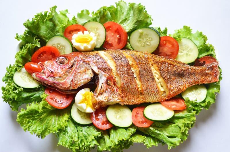 Grillad fisksallad med den skivad tomater, gurkan och grönsallat på arkivbild