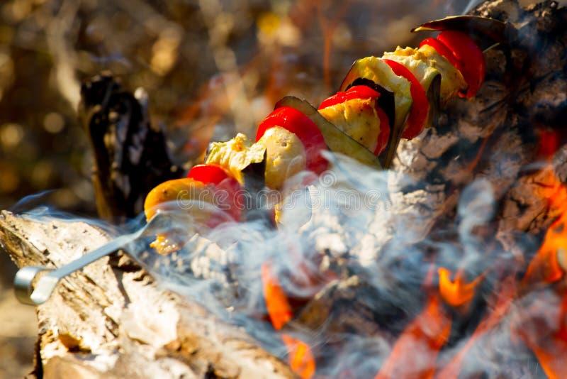 Grillad grönsakkebab i den öppna branden på pinnen arkivfoton