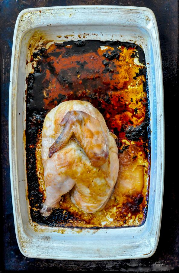 Grillad höna för halva i en vit rektangulär stekhet panna royaltyfri fotografi
