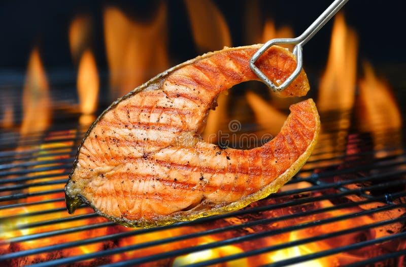 grillad lax royaltyfri foto