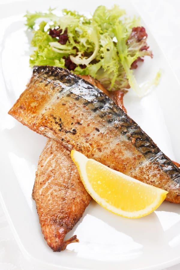 Grillad mackerel royaltyfri fotografi