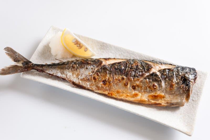 grillad mackerel arkivbilder