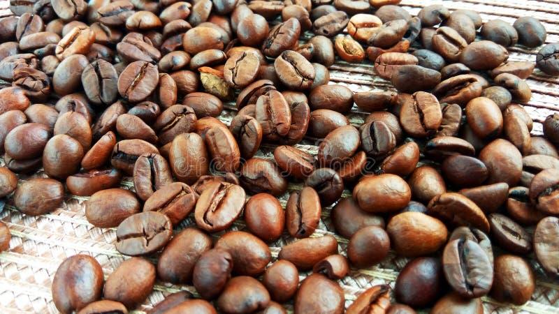 Grillade bruna kaffebönor på den ljusa textiltorkduken royaltyfria foton