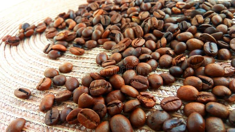 Grillade bruna kaffebönor på den ljusa textiltorkduken royaltyfri fotografi