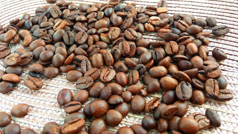 Grillade bruna kaffebönor på ljus torkdukebakgrund arkivbilder