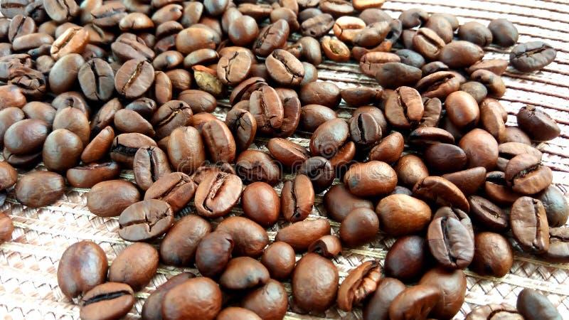 Grillade bruna kaffebönor på textiltorkdukebakgrund arkivfoton