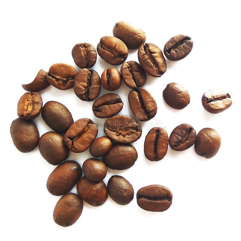Grillade brunt isolerade kaffebönor och frö arkivfoton