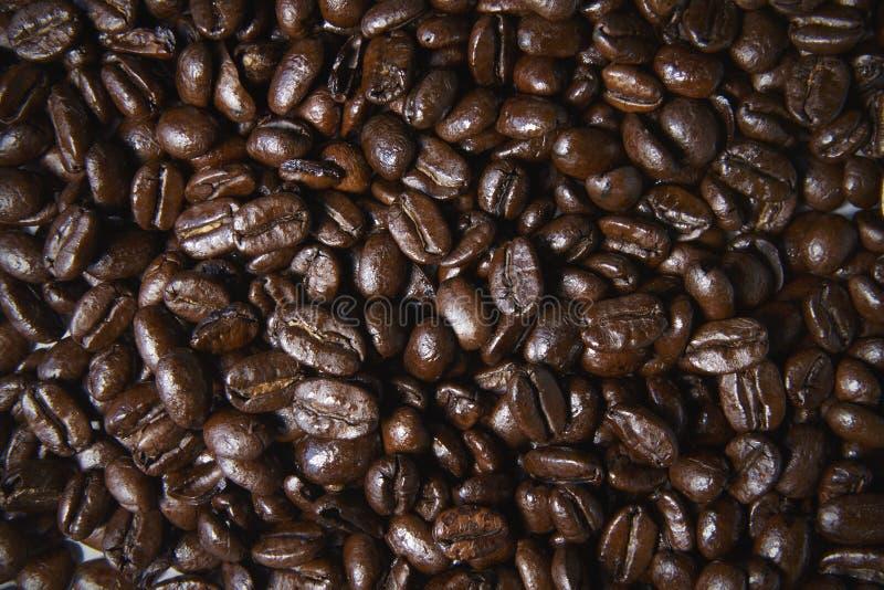 Grillade kaffebönor, full ram, slut upp arkivbild