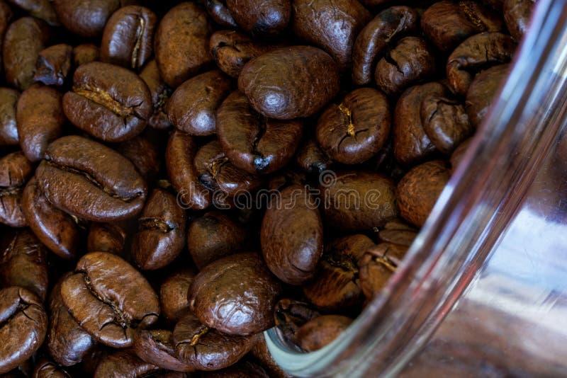 Grillade kaffebönor hälls ut ur en exponeringsglaskrus på en inpackningväxt N?rbild Makro royaltyfri fotografi