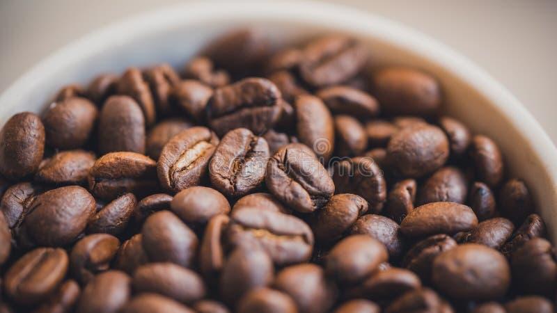 Grillade kaffebönor i den vita bunken fotografering för bildbyråer