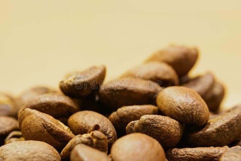 Grillade kaffebönor i detalj royaltyfri fotografi