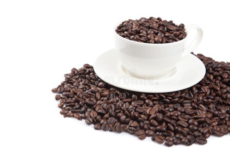 Grillade kaffebönor med en kopp royaltyfria bilder