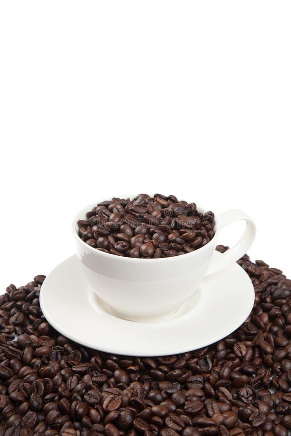 Grillade kaffebönor med en kopp arkivbilder