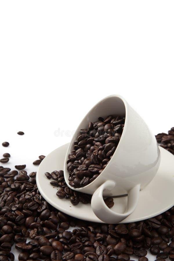 Grillade kaffebönor med en kopp royaltyfria foton
