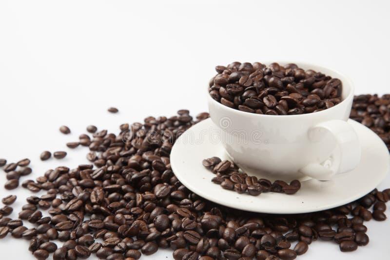 Grillade kaffebönor med en kopp arkivfoto